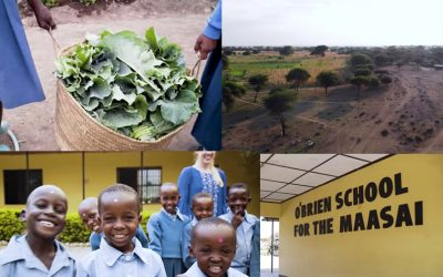 Teaching how to grow – fighting malnutrition